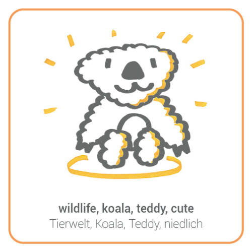 wildlife, koala, teddy, cute
