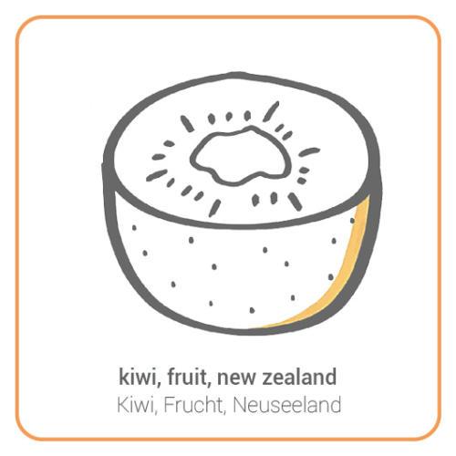 kiwi, fruit, new zealand