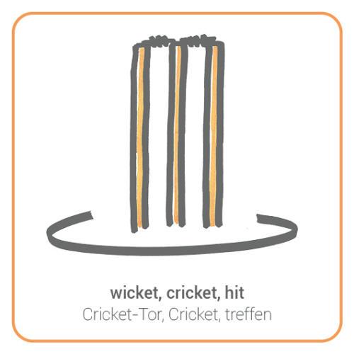 wicket, cricket, hit