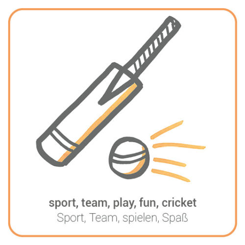 sport, team, play, fun, cricket